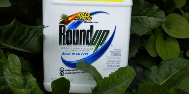 Roundup-e1357192553864