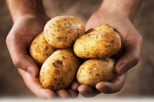 potato-300x199.jpg