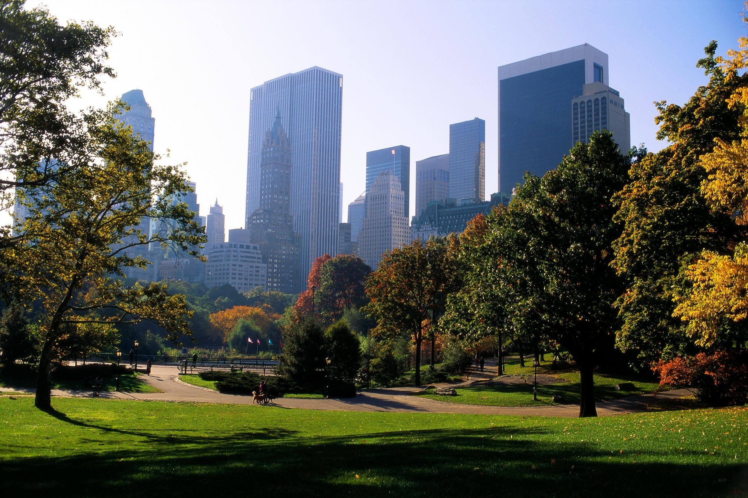 城市公园_Pesticide Sprayed on New York City Parks Linked to Cancer, Study Says - Sustainable Pulse