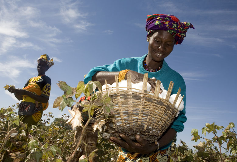Mali trade system