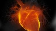 heart-300x207.jpg