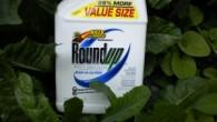 Roundup-300x225.jpg