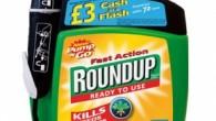 Roundup-Monsanto-290x300.jpg