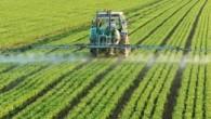 01-Spraying-Pesticides-300x147.jpg