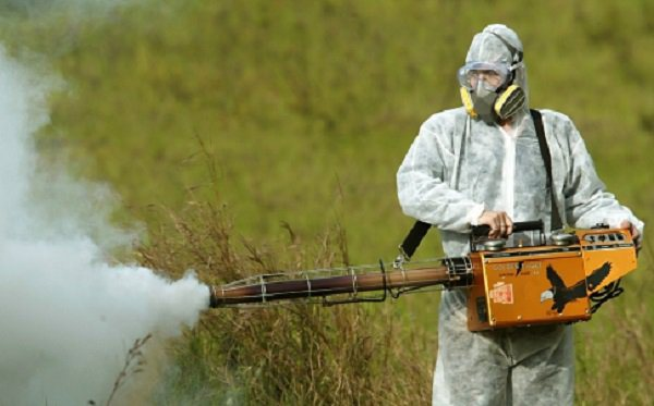 info on use of ddt When ddt became available for civilian use in 1945, there were only a few people who expressed second thoughts about this new miracle compound one was nature writer edwin way teale silent spring took carson four years to complete.
