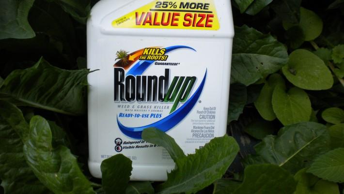 Roundup-008
