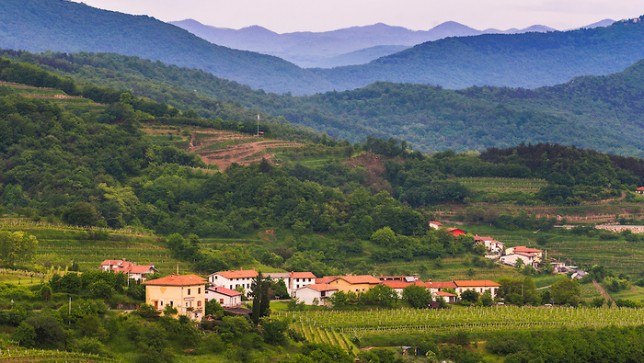 Slovenia gm crops