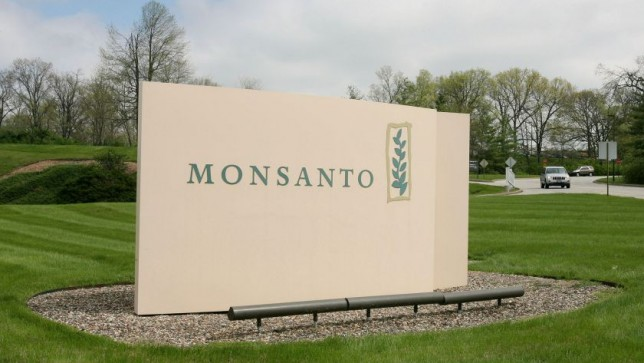 Monsanto Cuts 16 Of Work Force As Sales In Roundup Herbicide Fall