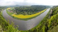 River-Elbe-glyphosate5.jpg