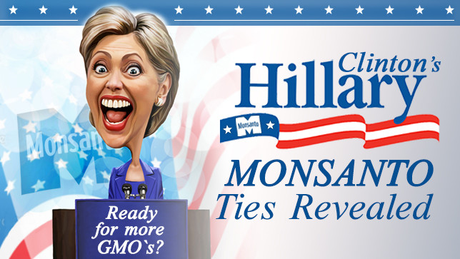 hillary clinton suffers monsanto bombshell on eve of us election
