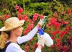 woman-pesticide-300x200.jpg