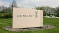 Monsanto-300x173.jpg