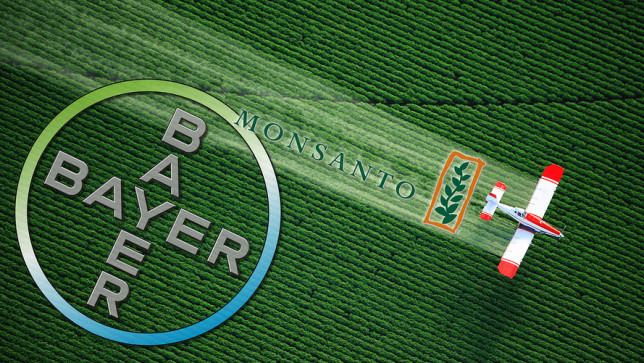 Bayer Monsanto Slump