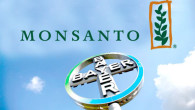 monsanto_bayer_750