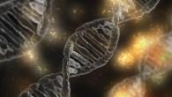 gene drives