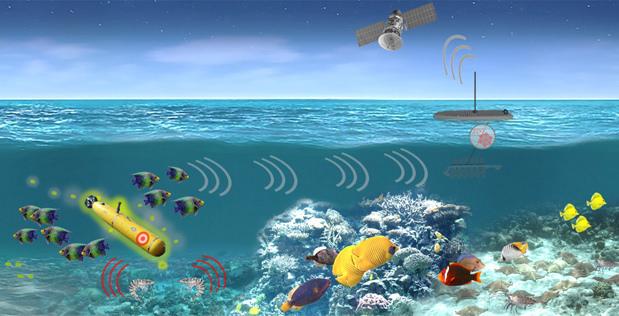 GMOs ocean pentagon