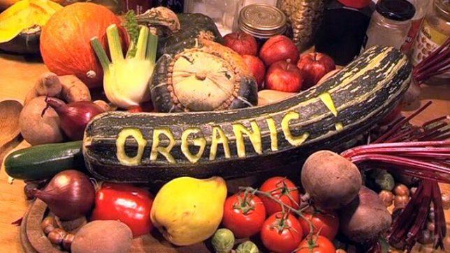 Bildergebnis für Kyrgyzstan Parliament Orders 100% Organic Agriculture