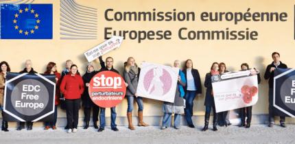 toxic-free EU
