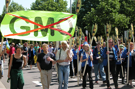 Anti-GMO-Researchers-Threatened-Image-via-climate-connections.org_