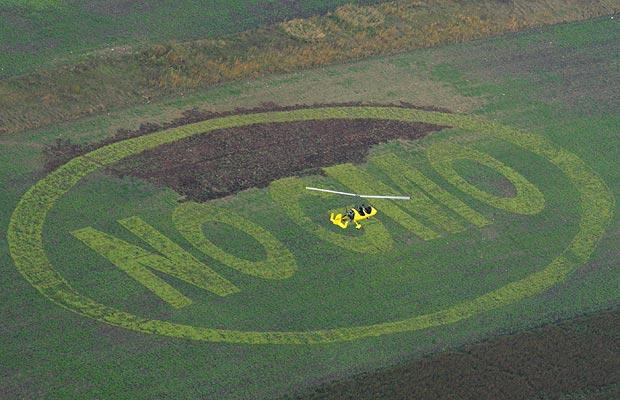 europe gm crops campaign