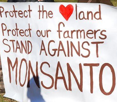 OSGATA Monsanto protest