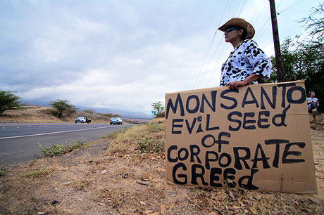 Seed Giants vs US Farmers