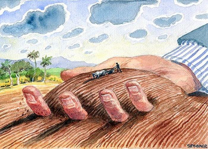 global land grab