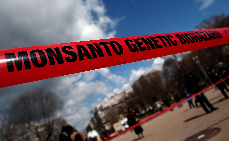GMO activism